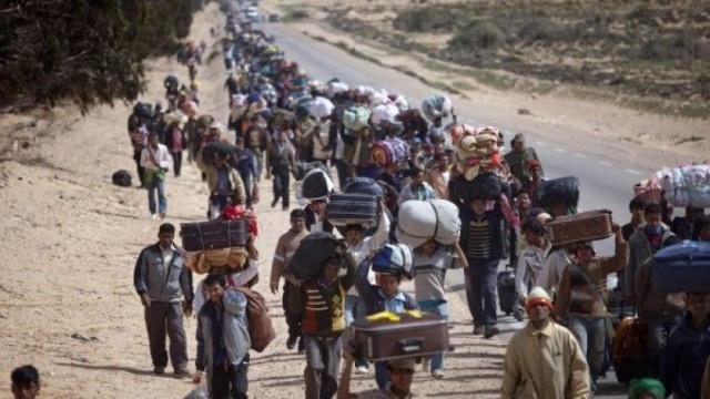 Refugiados 4 2