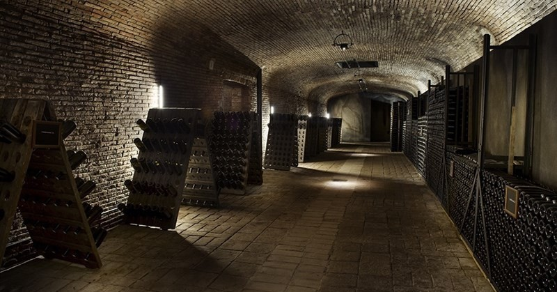 celler codorniu