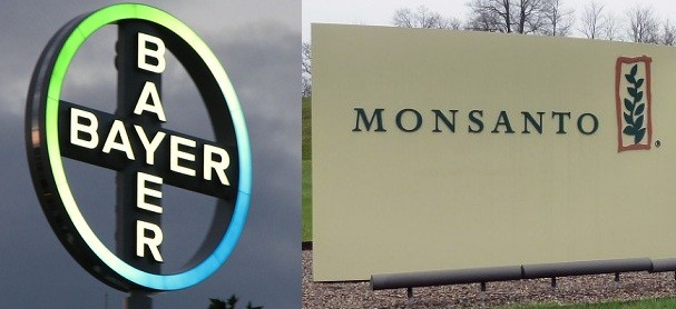 Bayer monsanto 07062018